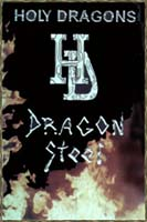 Обложка первого варианта Dragon Steel